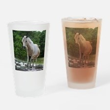 Assateague horse 2 Drinking Glass