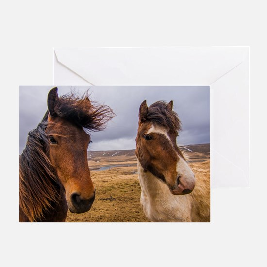 Horses of Iceland Greeting Card