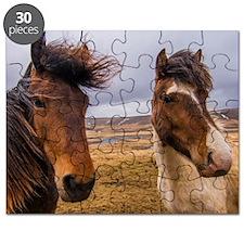 Horses of Iceland Puzzle