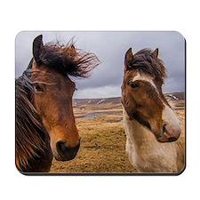 Horses of Iceland Mousepad