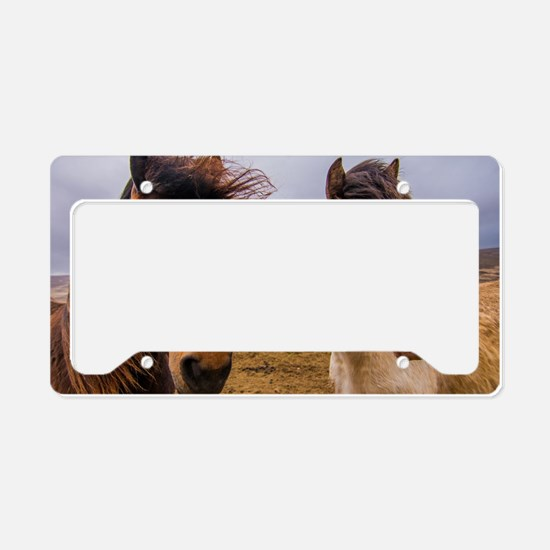 Horses of Iceland License Plate Holder