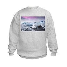 Glaciers of Iceland Sweatshirt