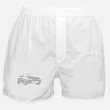 NA Silver Boxer Shorts