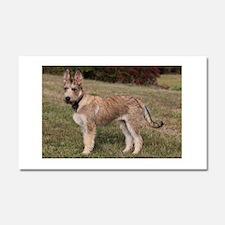 berger picard puppy Car Magnet 20 x 12