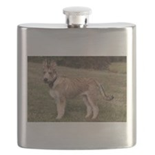 berger picard puppy Flask