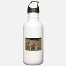 berger picard puppy Water Bottle