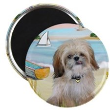 Beach with Shih Tzu Magnet