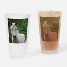 Assateague horse 3 Drinking Glass