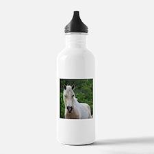 Assateague horse 3 Water Bottle