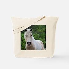 Assateague horse 3 Tote Bag