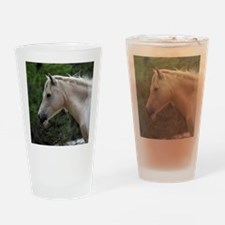 Assateague horse 4 Drinking Glass