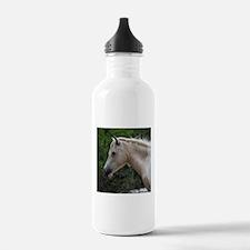Assateague horse 4 Water Bottle