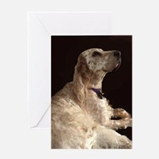 Unique Another chance for english setters Greeting Card