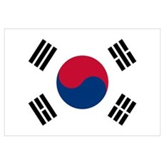 south korea flag Canvas Art