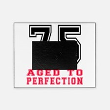 75 Aged To Perfection Birthday Desig Picture Frame