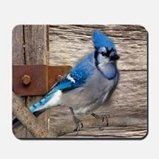 rustic barn wood blue jay Mousepad