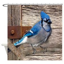 rustic barn wood blue jay Shower Curtain