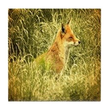 nature wildlife red fox Tile Coaster