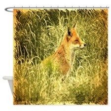 nature wildlife red fox Shower Curtain