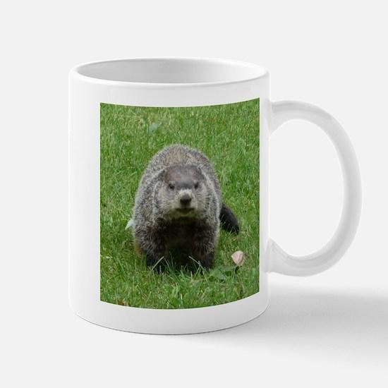 Groundhog (Woodchuck) Stainless Steel Travel Mugs