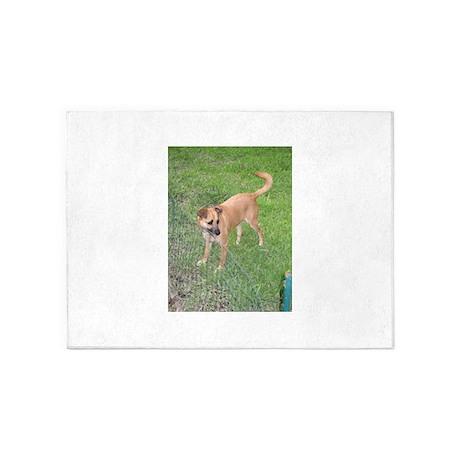Carolina Dog Full 2 5u0027x7u0027Area Rug