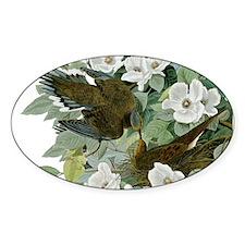 Carolina Pigeon John James Audubon Birds Decal