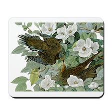 Carolina Pigeon John James Audubon Birds Mousepad