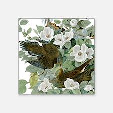 Carolina Pigeon John James Audubon Birds Sticker