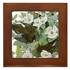 Carolina Pigeon John James Audubon Birds Framed Ti