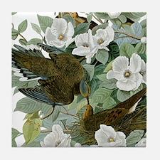 Carolina Pigeon John James Audubon Birds Tile Coas