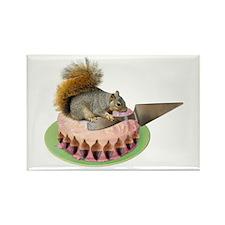 Squirrel Cutting Cake Rectangle Magnet