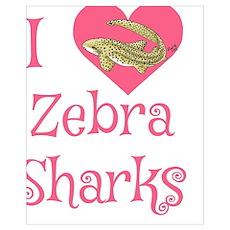 I love zebra sharks Poster