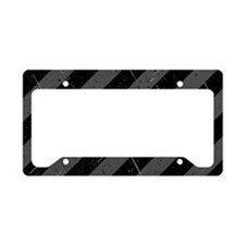 Metallic License Plate Holder