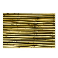 Yellow Bamboo Pattern Postcards (Package of 8)