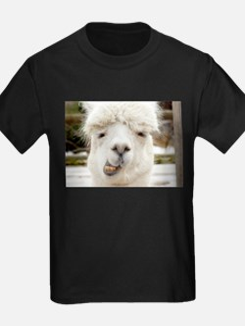 Funny Alpaca Smile T-Shirt