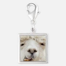 Funny Alpaca Smile Charms