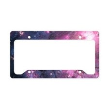 Unique Spaced License Plate Holder