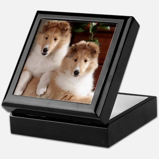 Cute Collie Keepsake Box