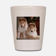 Cute Collie Shot Glass