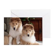 Cute Collie puppy Greeting Card