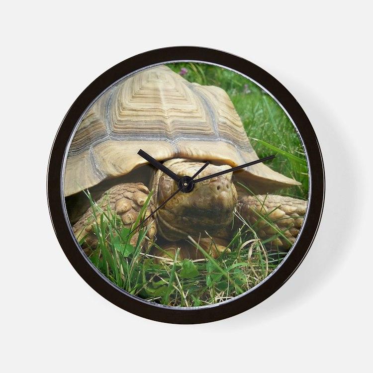 Sulcata Tortoise Wall Clock
