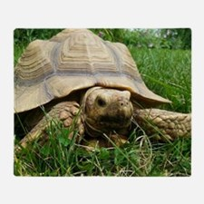 Sulcata Tortoise Throw Blanket