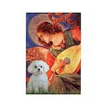 Mandolin Angel & Maltese Rectangle Magnet (10 pack