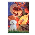 Mandolin Angel & Maltese Postcards (Package of 8)