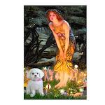 Fairies & Maltese Postcards (Package of 8)