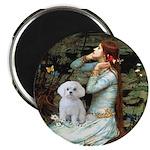 Ophelia's Maltese Magnet