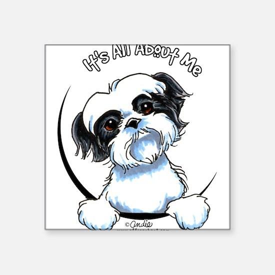 """Cute Shih tzu dogs Square Sticker 3"""" x 3"""""""