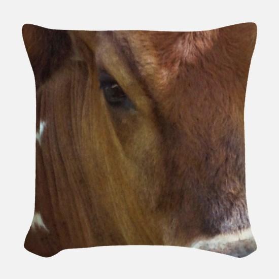 Bessie Woven Throw Pillow