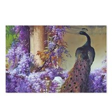 Bidau Peacock, Doves Wist Postcards (Package of 8)