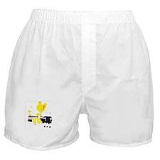 woodstockpeace Boxer Shorts